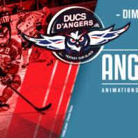 «Tout Angers Bouge» avec Les Ducs d'Angers !